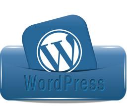 Content Management WP