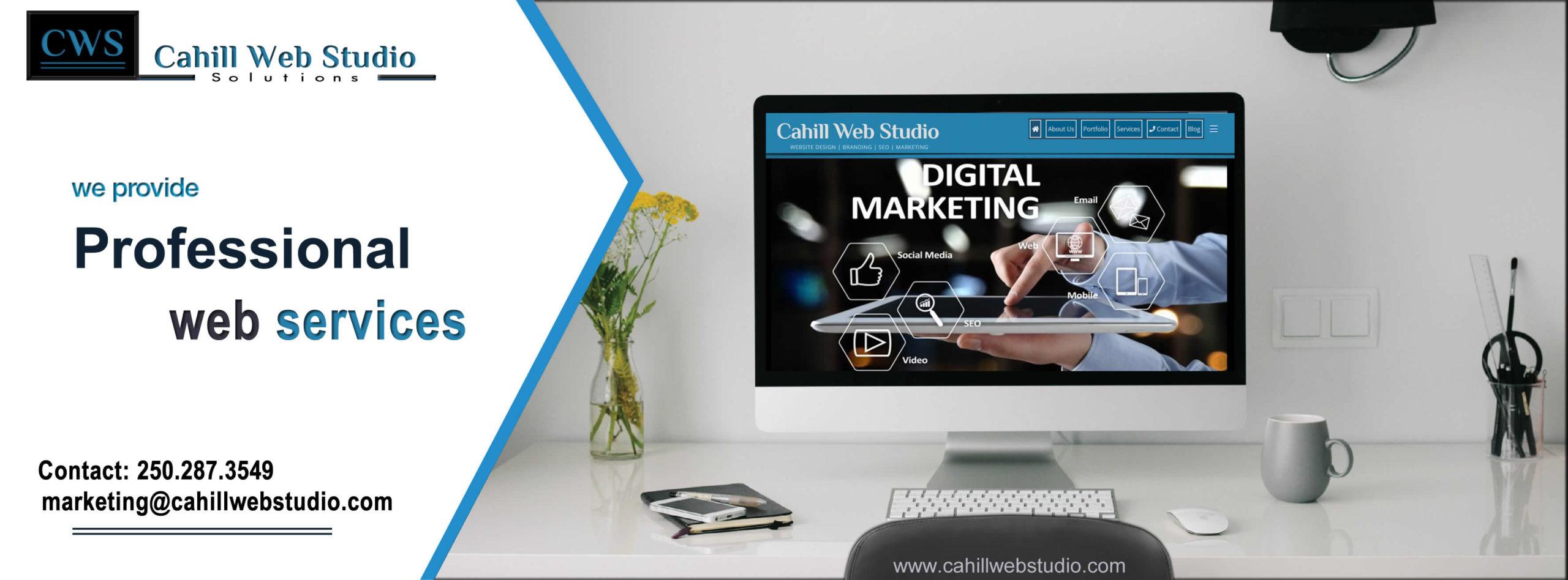 professional-web-services
